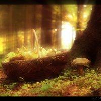 Корзинка с грибами (2). :: Елена Kазак