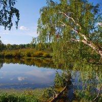 Живописное озерко :: Татьяна Аистова