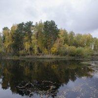 Осень. :: Сергей Адигамов