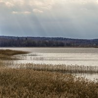 У озере :: Сергей Цветков