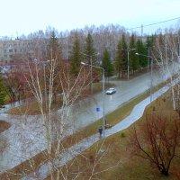 После дождичка , в четверг . :: Мила Бовкун