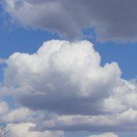 Весенние облака. :: сергей