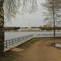 С видом на северный речной вокзал... :: Юрий Моченов