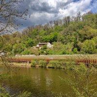 Вчера. прогулка вдоль реки ... :: igor G.