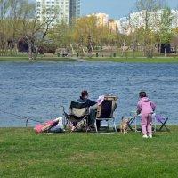 Семейный отдых - дёшево и сердито :: Валерий Иванович