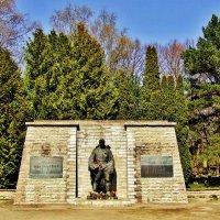 Бронзовый солдат(Монумент Павшим во Второй мировой войне) :: Aida10
