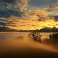 sunset :: Elena Wymann