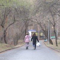 В парке Маяковского :: Елена Шаламова