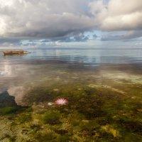 Перед штормом... Филиппины! :: Александр Вивчарик