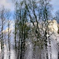 И небо проясняется... :: Ирина Румянцева