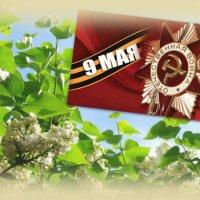С Великой Победой!!! :: Тамара (st.tamara)