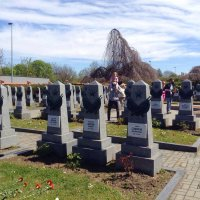 захоронения Советских воинов  ВОВ :: Светлана Баталий