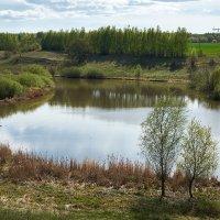 Залив Степной :: Олег Манаенков