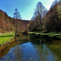 Река  Пегнитц  ,природа оживает  после  холодной  весны :: backareva.irina Бакарева