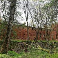 Руины замка Бальга. :: Валерия Комова