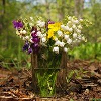 Про лесные майские букеты... :: Андрей Заломленков