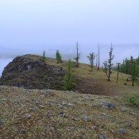 Вдоль туманного Байкала :: Ольга