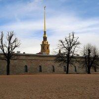 У стен Петропавловской крепости. :: веселов михаил