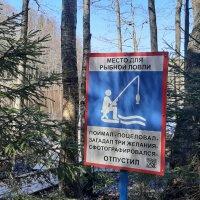 Место для рыбалки на озере Глухое :: Елена Павлова (Смолова)