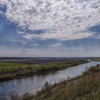Донской пейзаж :: Сергей Цветков