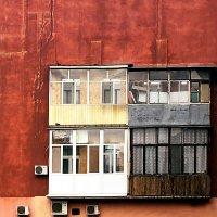 ГНЕЗДА :: Sergii Ruban