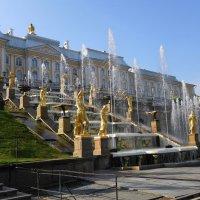 Государственный музей-заповедник «Петергоф» :: Маргарита Батырева