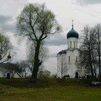 У храма Покрова. :: Владимир Шошин