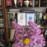 Место психологической разгрузки поэта-философа Михаила Арошенко :: Alex Aro Aro Алексей Арошенко