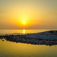 Тростник и море :: Николай Гирш