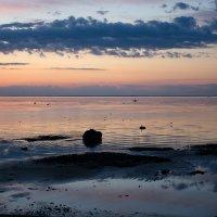 Вечер  закат залив берег :: Валентина Папилова