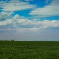 Весенний горизонт :: Сергей Шаталов