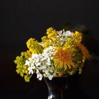 Полевые цветы ... :: Владимир Икомацких