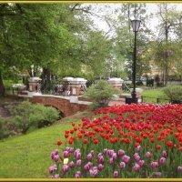 Весною все иначе-люди добрее,дни длиннее,счастье ярче! :: Нина Андронова
