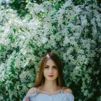 Яблони в цвету :: Людмила Зяблова