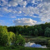 Лето утверждается :: Андрей Лукьянов