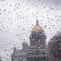 Дождливый Петербург :: Марина Теплицкая