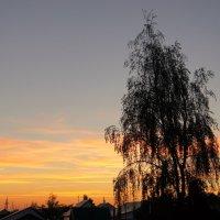 Отблеск заката. :: сергей