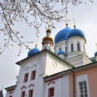 Купола Николо-Перервинского монастыря :: Olcen Len