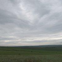 про поля и небо :: Елена Шаламова