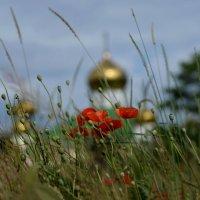 Мерцающий храм запоздалого лета... :: Лиана Краснопольская .