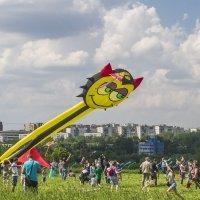 Праздник воздушных змеев. :: Петр Беляков