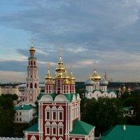 Новодевичий монастырь :: Дмитрий Гусев