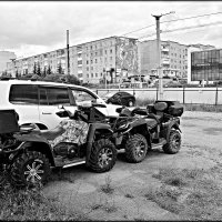 *** :: Александр Шимохин