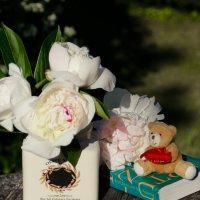 Пышноцветные пионы нас нарядом радуют своим... :: Татьяна Ивановна