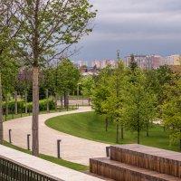 Парк Галицкого в Краснодаре :: Игорь Сикорский
