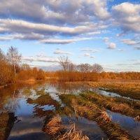 Весенний разлив на закате :: Екатерина К.
