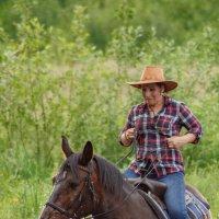 Образ ковбоя и лошади :: Дмитрий