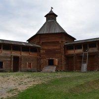Моховая башня Сумского острога в Коломенском :: Александр Качалин