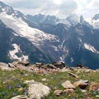 И горы , и луга ... :: Galina Solovova