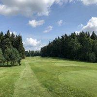 Поле для гольфа ... :: Лариса Корж